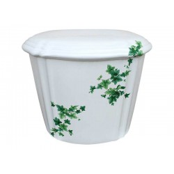 Ivy Painted Toilet