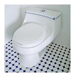 oriental dragon hand painted toilet in blue and white bathroom